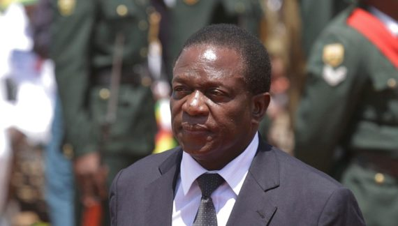 Zimbabwe approves herbal treatment for COVID-19